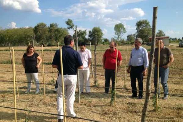 AgriBio: l'innovazione della ricerca Biotec nello sviluppo di nuovi prodotti agroalimentari